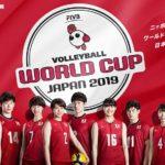 【ワールドカップバレー2019】動画を無料フル視聴。全試合見逃し可能!